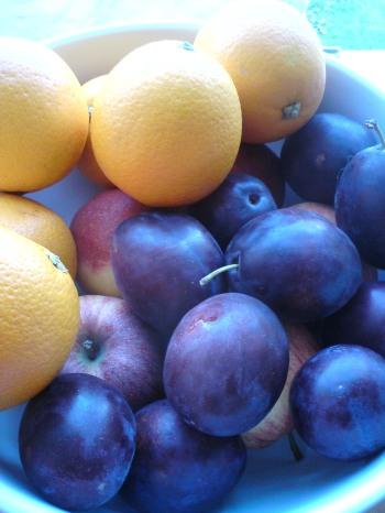 Svært at beskrive en blomme når man kigger på en appelsin, ikke?  Foto: Anja Christensen www.ordlaboratoriet.wordpress.com